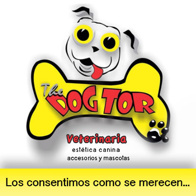 the-dogtor-maravatio